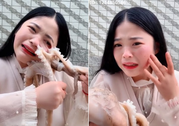 Octopus nearly rips off face of Chinese livestreamer who tries to eat it alive