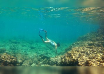New coral reef restoration technology aims to reverse climate change damage