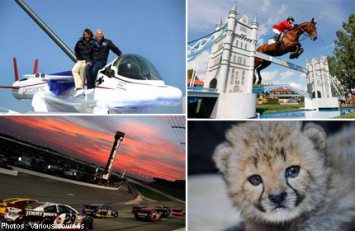 10 expensive hobbies that only the rich and famous can afford