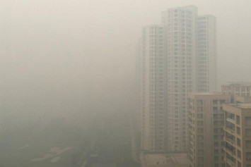 Polluted Delhi air akin to death sentence, say doctors
