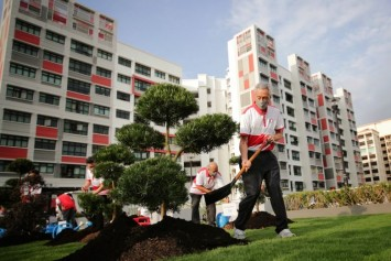 Tree Planting Day: PM Lee plants bonsai trees at Hougang rooftop garden