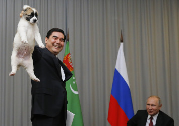 WATCH: Dog lover Putin gets Turkmenistan's top breed pup as birthday gift
