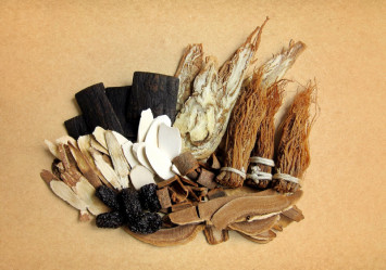 Avoid these animal products in TCM: they are not as effective as claimed