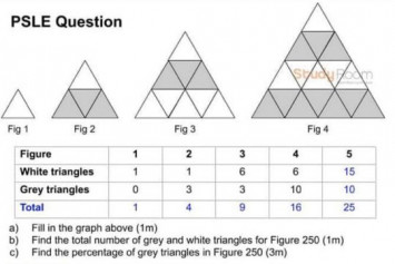 'Tough' 2019 PSLE maths paper: 5 challenging questions over the years