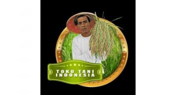 Is that Jokowi?: Rice sack model mistaken for President