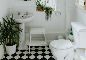 Things you need to know before choosing your toilet bowl