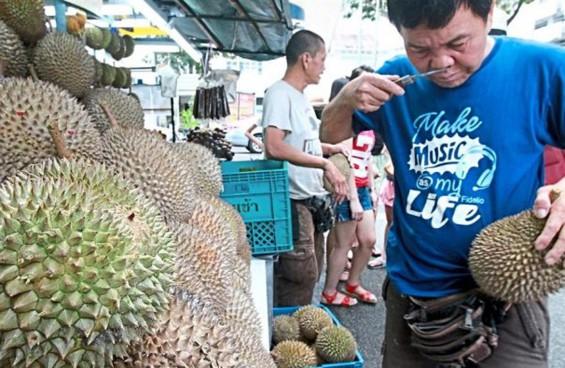 Price of Black Thorn durian overtaking famed Musang King's