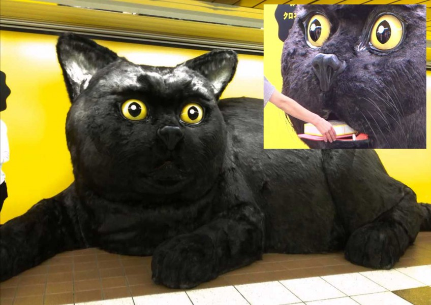 Giant black cat in Japan train station gives gifts in exchange for nose rubs