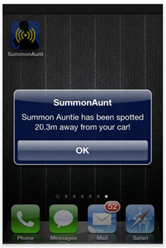 Summon Auntie