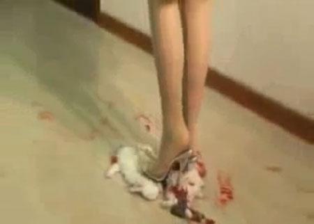 Японка топчет ногами котенка видео — img 8